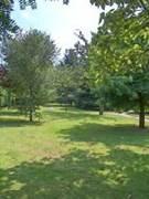 Arboretum de Labuissière