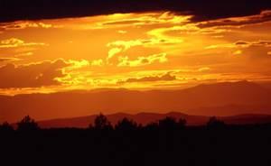 Fossiles  au coucher du soleil