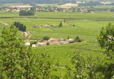Domaine de Lapagnol