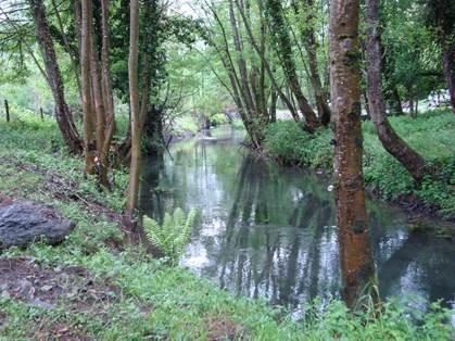 Le Ruisseau d'Antignac