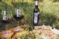 Les vignerons de ST Dézéry