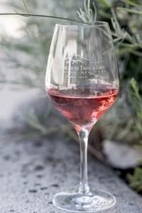 Dégustation de vins comentée à la cave des Vignerons de Tavel et Lirac