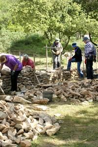 Restaurons nos murets en pierre sèche