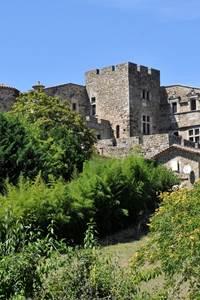 Château Saint-Bonnet-de-la-Salendrinque