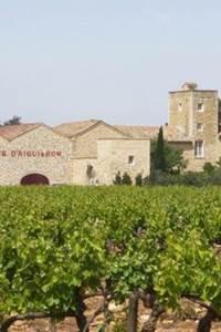 À la découverte du Château d'Aiguilhon
