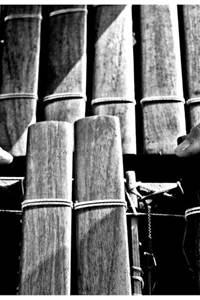 """Concert à la salamandre """"Balaphonik Sound System"""""""