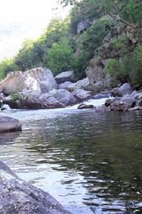 Un été avec le Parc ! Une pêche singulière !
