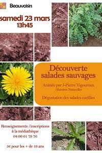"""Sortie """" Découverte des salades sauvages"""""""