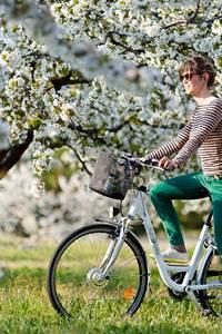 Sun E Bike