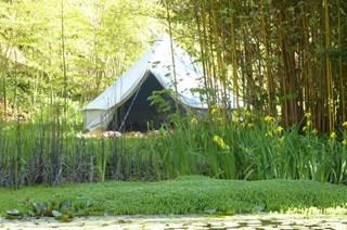 Camping Bivouac sous les étoiles