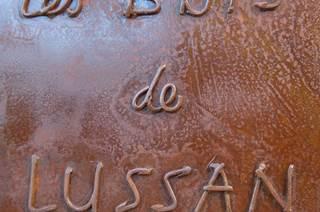 VIEILLOT Thierry - chambre cigale lussannaise