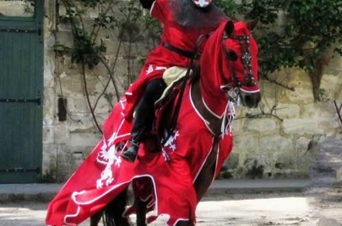 le chevalier dragon ©