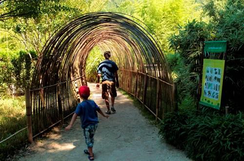 La Bambouseraie de Prafrance ©