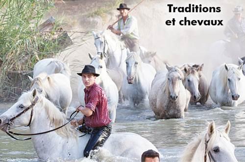 Traditions avec les chevaux, la gase ou traversée en nageant des chevaux avec leurs cavaliers du Rhône, Vidourle ou canaux ©